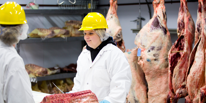Food Science - Meat Production