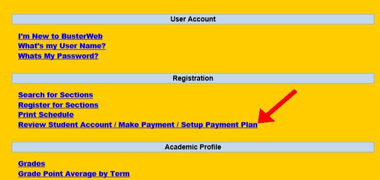 First link in payment setup plan